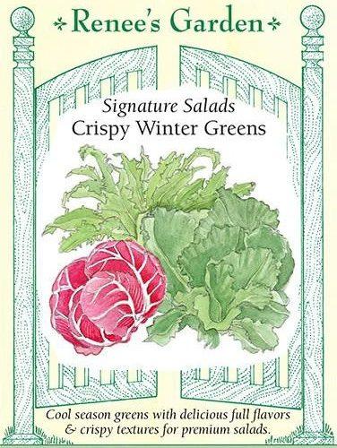 Crispy Winter Greens