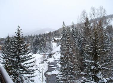 Winter View (1)