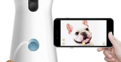 cámara para mascotas que lanza premios o chuches mediante una app desde el móvil