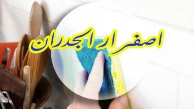 Photo of اصفرار الجدران 920008956