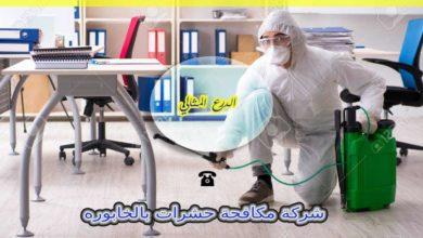 Photo of شركة مكافحة حشرات بالخابوره 92822714