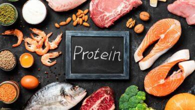 Photo of Proteína, o que é e para que serve?
