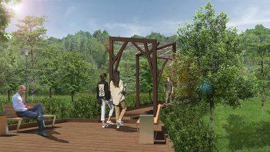 Photo of В парке «Филатов луг» появится экотропа  В парке «Филатов луг» появится экотропа                                        390x220