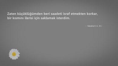 Photo of Sabahattin Ali Sözleri