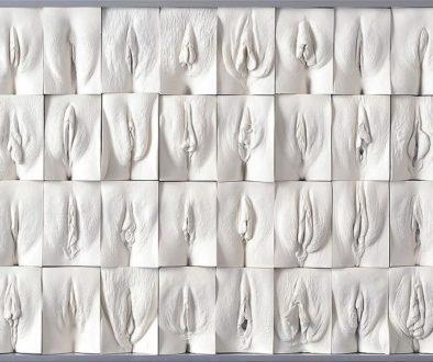 Vaginas de escayola