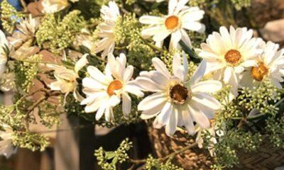 Lilled, vaasid, potid