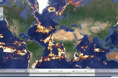 Atlantic view of fishing activity on Global Fishing Watch.