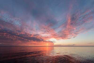 solopgang Møn havørred kystfluefiskeri sølvtøj