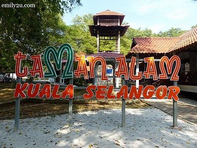 2. Kuala Selangor Nature Park (Taman Alam)