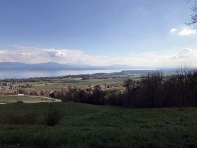 Mont-sur-Rolle Natur