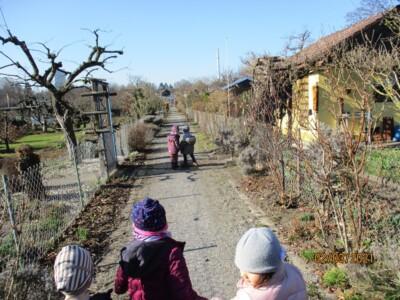 Fünf Kinder laufen auf einem Weg zwischen mehreren Schrebergärten