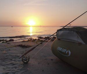 Flyderinge i solnedgang