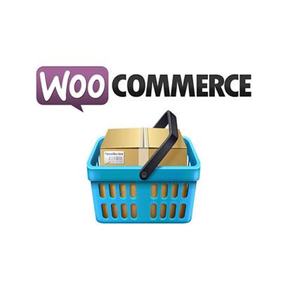 دوره آموزشی ایجاد فروشگاه آنلاین