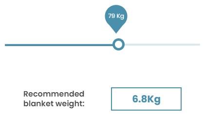 Image shows the Kalm Koala weight slider tool.