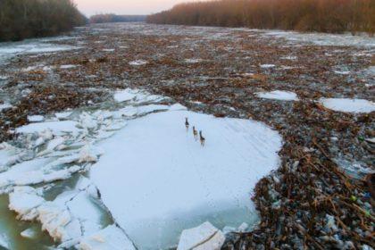 Országok összefogásával számolható fel a Tisza szennyezése