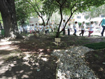 Mezítlábas ösvény a Kőbányai Kékvirág Óvodában, a Raben jóvoltából