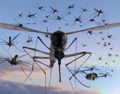 Szúnyog, vér, építőipar: jönnek a drónok!