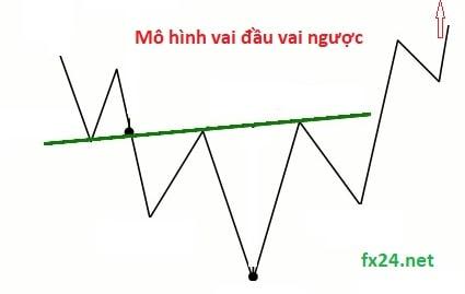 F-x-width-width-fx24-min