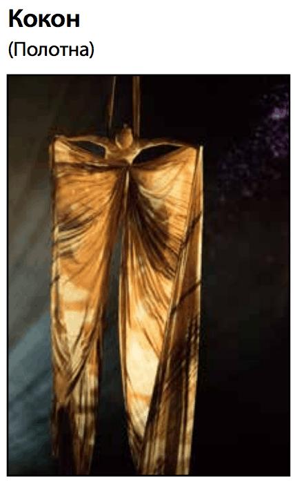 Шоу ovo от cirque du soleil в ДС «Лужники» Шоу OVO от Cirque du Soleil в ДС «Лужники»                           2018 05 05    23