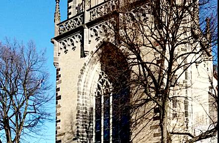 Ökomarkt Köln