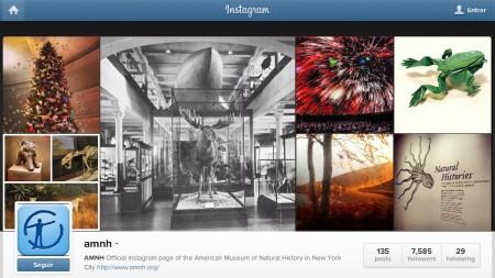 Museo Americano de historia natural instagram