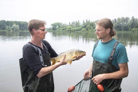 Fischexpertise vom Fachmann