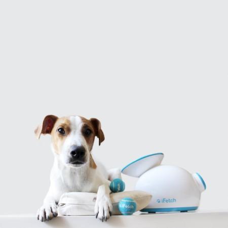 Lanzador de pelotas automático para perros iFetch - mejor juguete para perros