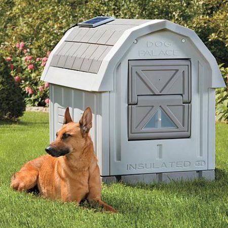 ASL Solutions - Palacio para Perros de tamaño Mediano a Grande
