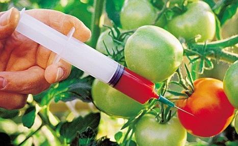 Микробиомы и биопестициды для сельского хозяйства