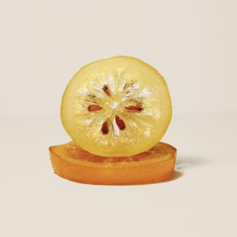 citron-confit-lilamand-confiseur-saint-remy-de-provence