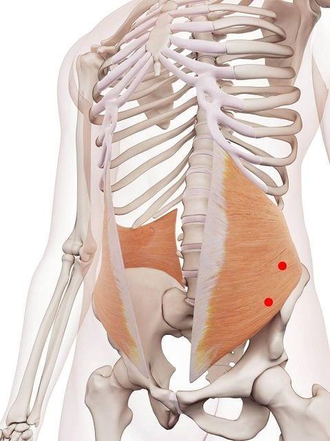 Triggerpunkte verursachen Schmerzen im Bauch und schränken die Beweglichkeit des Rumpfes ein.
