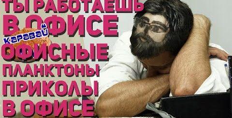 КАРАВАЙTV / ТЫ РАБОТАЕШЬ В ОФИСЕ / ОФИСНЫЕ ПРИКОЛЫ / ПРИКОЛЫ В ОФИСЕ