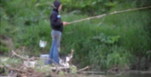 Любимый КОТ РЫБАКА рыбачит вместе с хозяином (Приколы на рыбалке 2016).