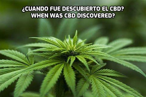 ¿Cuando fue descubierto el CBD?