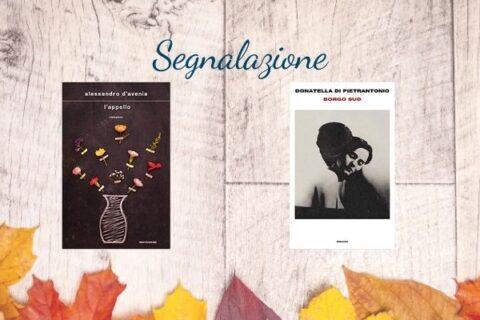 Segnalazione Narrativa   Borgo Sud di Donatella Di Pietrantonio e L'appello di Alessandro D'Avenia