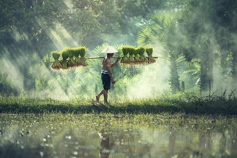 Partir en voyage au Cambodge