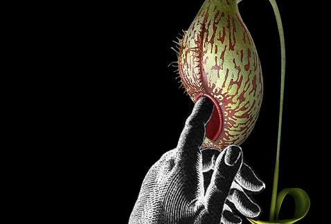 bio-innovation et biologie de synthèse