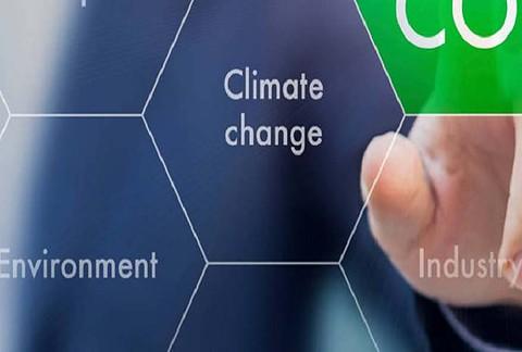 stratégie bas carbone