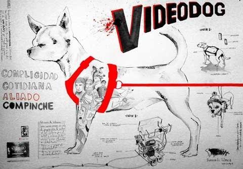 videodog