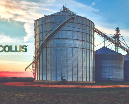 La gestione ordinaria dell'azienda agricola medio-grande