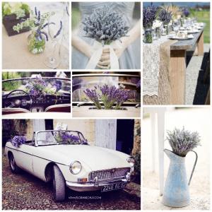 wedding-provence-lavender-1