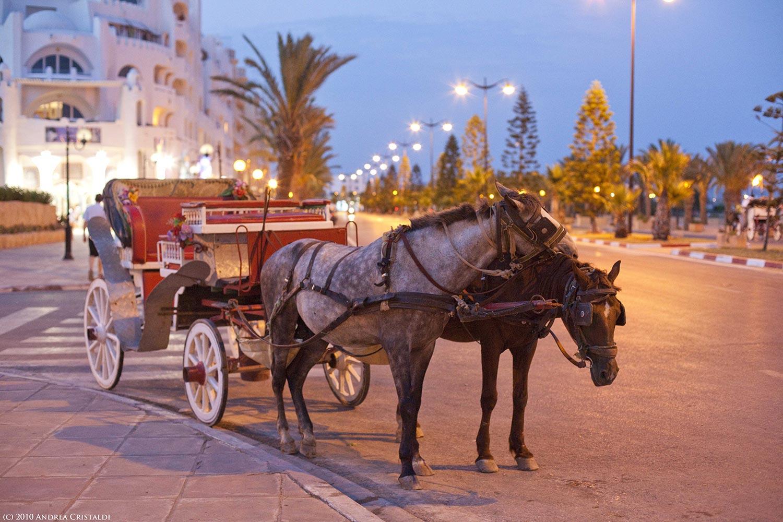 Weekend en Tunisie