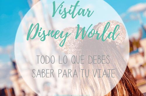 Visitar Disney World