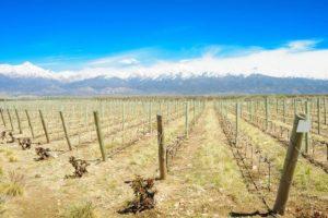 Uco Valley, Mendoza Wine Regions and Sub-Regions | Visit the Mendoza Wine Region of Argentina