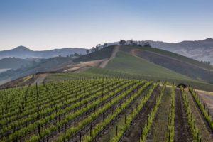Happy Canyon AVA in Santa Barbara, California | Best Wineries in Happy Canyon | Winetraveler.com