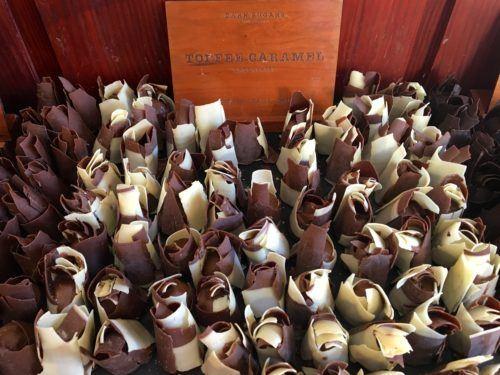 African chocolate tulips on brick lane
