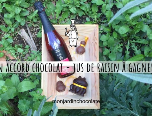 Un accord chocolat – jus de raisin surprenant à gagner !