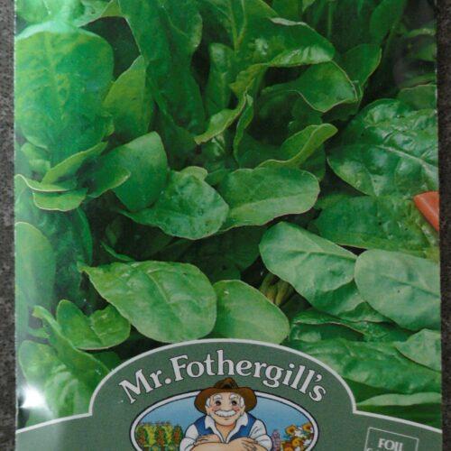 Perpetual Leaf Beet Spinach
