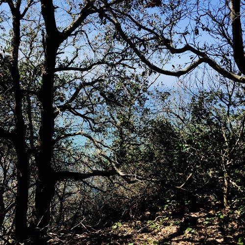 sentieri isola d'elba