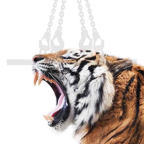 Anschlagmittel Tiger